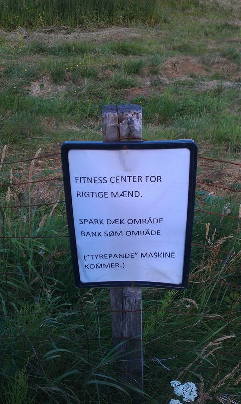 fitnesformænd